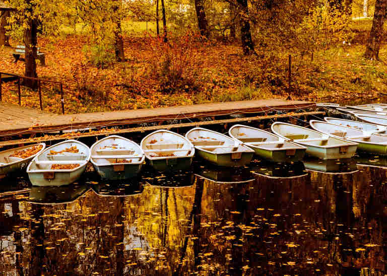 Boats at a jetty in autumn