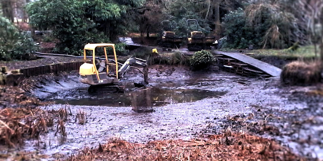 Silt removal from a natural on-stream pond